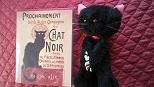 サティ 黒猫.JPG